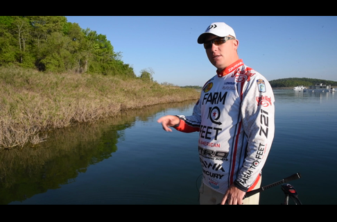 Sight Fishing Part 3: Catch Bedding Bass